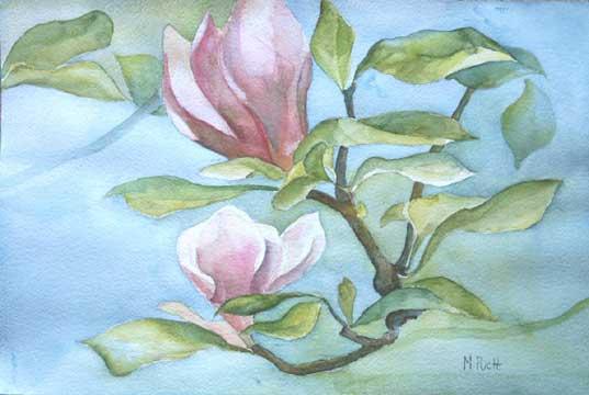 311--Magnolia-au-matin-aquarelle  50x40