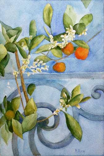 315-oranger-aquarelle 45x30